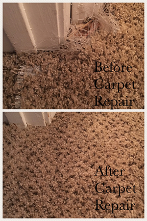 When expertly installed and properly maintained, the carpets in your Gwinnet County home can stay looking great for years or even decades.