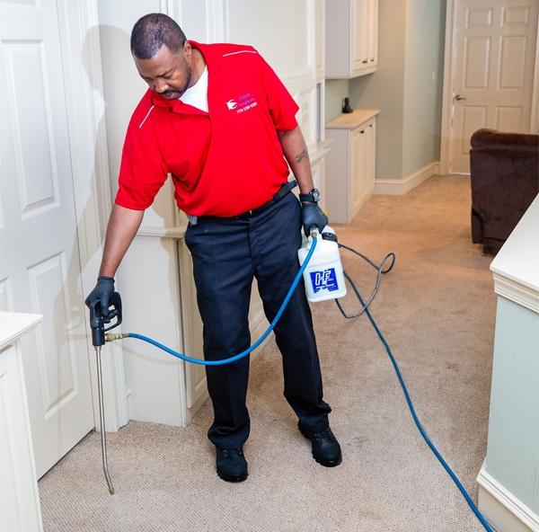 carpet cleaning loganville ga