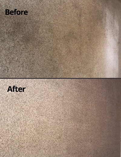Gallery Carpet Cleaning Grayson Duluth Dacula Buford